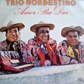 Amor pra Dar von Trio Nordestino