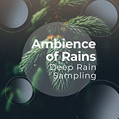 Ambience of Rains von Various Artists