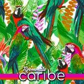 Caribe de Roommate