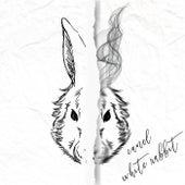 White Rabbit de Canel