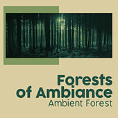 Forests of Ambiance von Various Artists