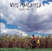 Silang Mabele de Vusi Mahlasela