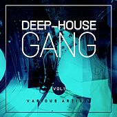 Deep-House Gang, Vol. 1 by Various Artists