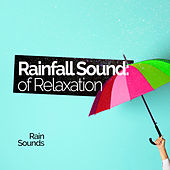 Rainfall Sound of Relaxation by Rain Sounds