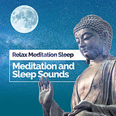 Meditation and Sleep Sounds de Relax Meditation Sleep