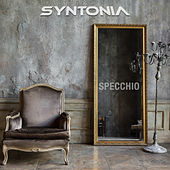 Specchio by Syntonia Band