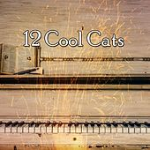 12 Cool Cats von Peaceful Piano
