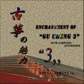 Enchantment Of Gu Zheng 3 by Shinji Ishihara