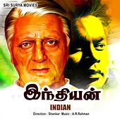 Indian by Various Artists