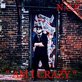 Am I Crazy by New Creative Evolution