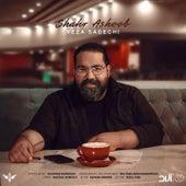 Shahr Ashoob by Reza Sadeghi