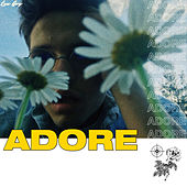 Adore by Lux Boy