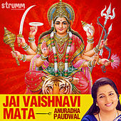 Jai Vaishnavi Mata - Single by Anuradha Paudwal