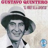 El Virrey de la Juventud von Gustavo Quintero