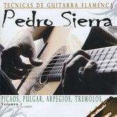 Tecnicas de Guitarra Flamenca de Pedro Sierra