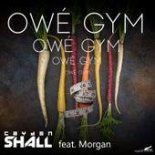 Owé Gym von Cayden Shall