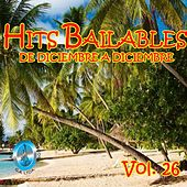 Hits Bailables de Diciembre a Diciembre, Vol. 26 de Various Artists
