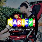 Call Marley von Babybandz