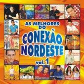 As Melhores do Conexão Nordeste, Vol. 1 by Various Artists