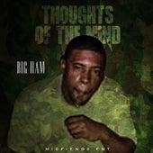 Thoughts of the Mind von Bigham