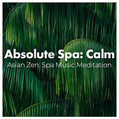 Absolute Spa: Calm by Various Artists