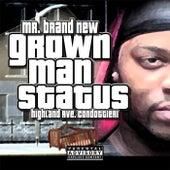 Grown Man Status de Mr. Brand New