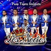 Puro Tierra Caliente de Various Artists