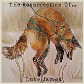 The Resurrection Of... de Luke James