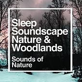 Sleep Soundscape - Nature & Woodlands by Sounds Of Nature