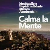 Calma la Mente de Meditação e Espiritualidade Musica Academia