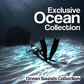 Exclusive Ocean Collection by Ocean Sounds Collection (1)