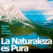 La Naturaleza es Pura de Various Artists