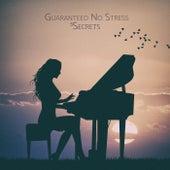 Guaranteed No Stress by 5 Secrets