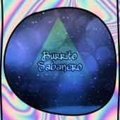 Burrito Sabanero by Leonardo Andrade