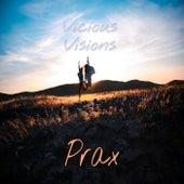Vicious Visions de Prax