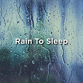 Rain To Sleep by Rain Sounds