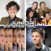 Junior Songfestival 2019 van Various Artists