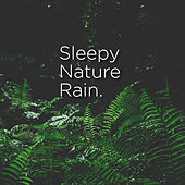 Sleepy Nature Rain by Rain Sounds