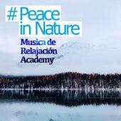# Peace in Nature de Musica de Relajación Academy