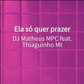 Ela só quer prazer van DJ Matheus MPC