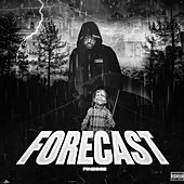 Forecast by Finesse