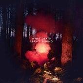 What Death Leaves Behind - Single by Los Campesinos!