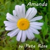 Amanda by Pete Rose