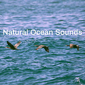 Natural Ocean Sounds di Various Artists