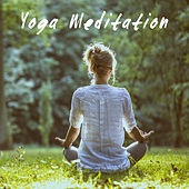 Yoga Meditation de Various Artists