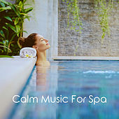 Calm Music For Spa di Various Artists