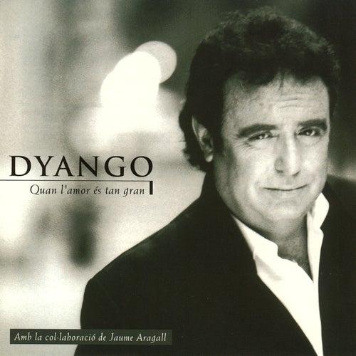 Quan L'amor És Tan Gran by Dyango