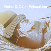 Quiet & Calm Relaxation by Various Artists