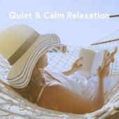 Quiet & Calm Relaxation de Various Artists