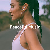 Peaceful Music de Various Artists